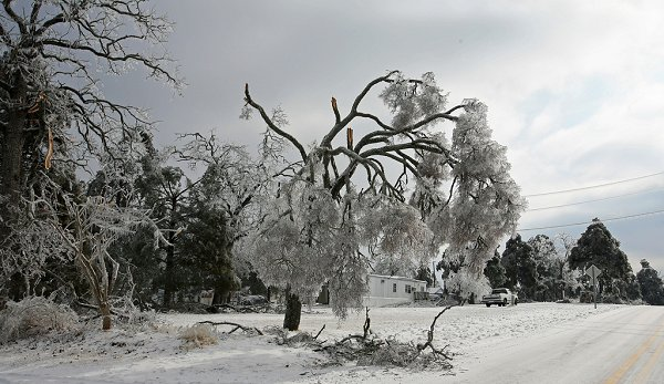 Beaver Dam (KY) United States  city pictures gallery : January 26 28, 2009 Ice Storm Eastern United States