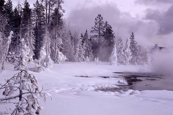 wintercenter.homestead.com/files/ys1.jpg